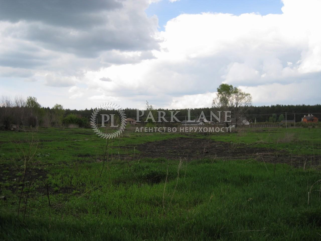 Земельна ділянка Проців, N-15322 - Фото 5