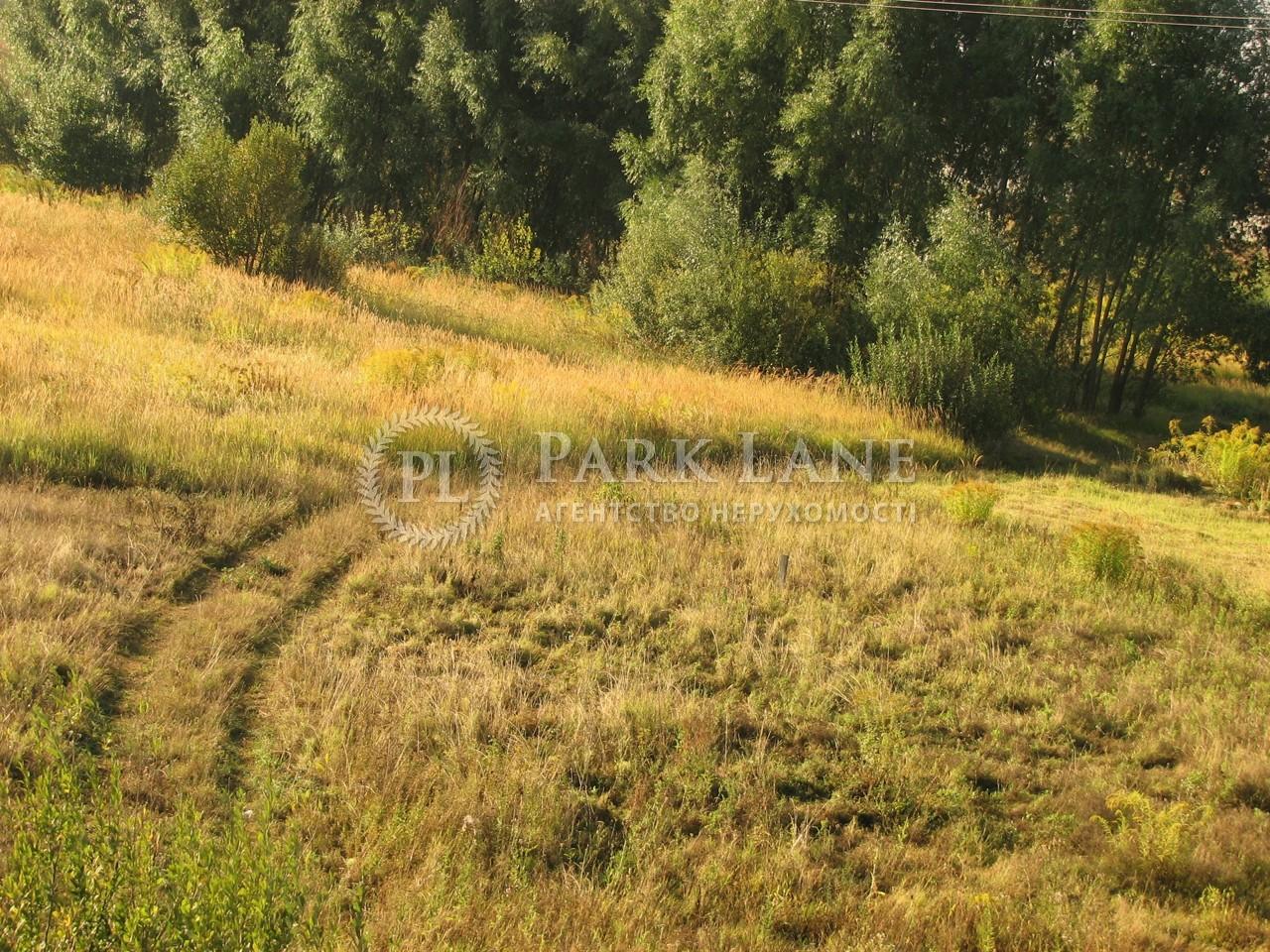 Дом Новые Петровцы, Z-1335120 - Фото 25