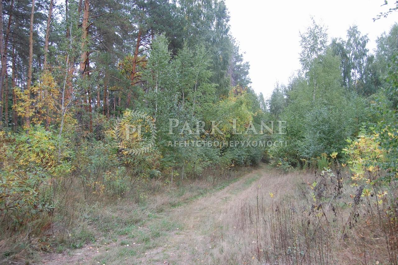 Земельна ділянка Крушинка, X-24995 - Фото 1