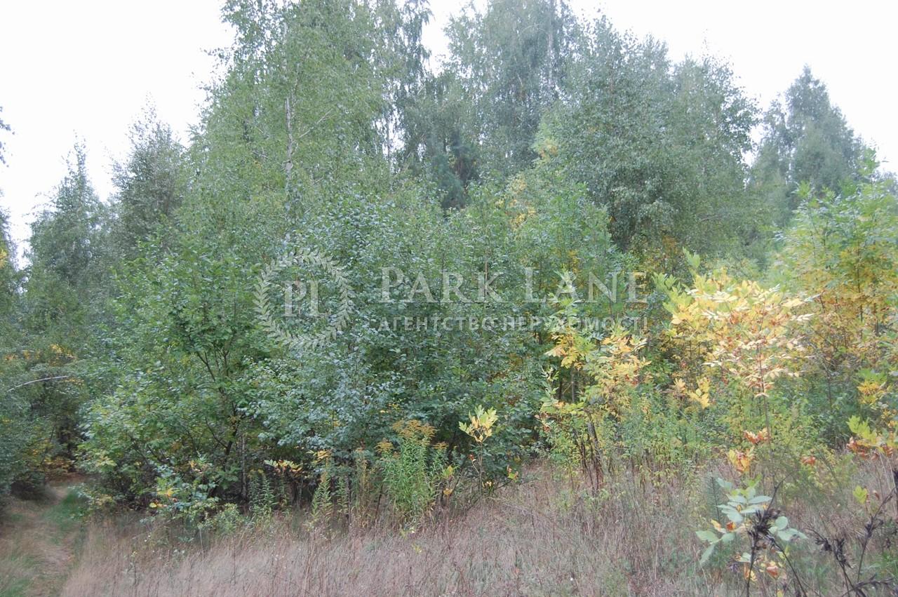 Земельна ділянка Крушинка, X-24995 - Фото 2