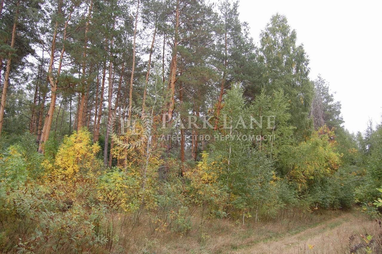 Земельна ділянка Крушинка, X-24995 - Фото 4