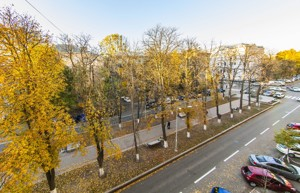 Квартира J-13265, Липская, 9а, Киев - Фото 19