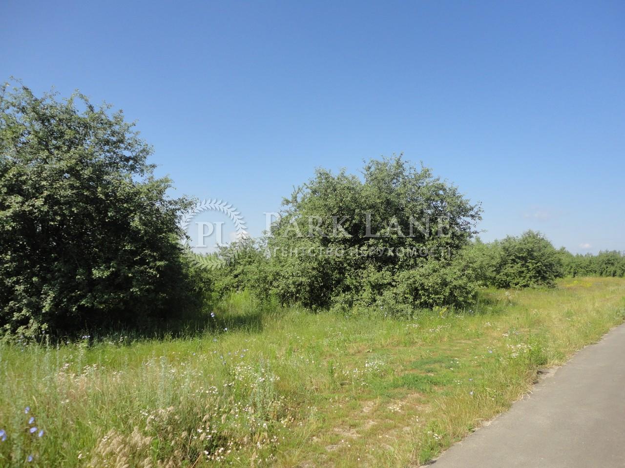 Земельна ділянка вул. Молодіжна, Іванковичі, L-22977 - Фото 2