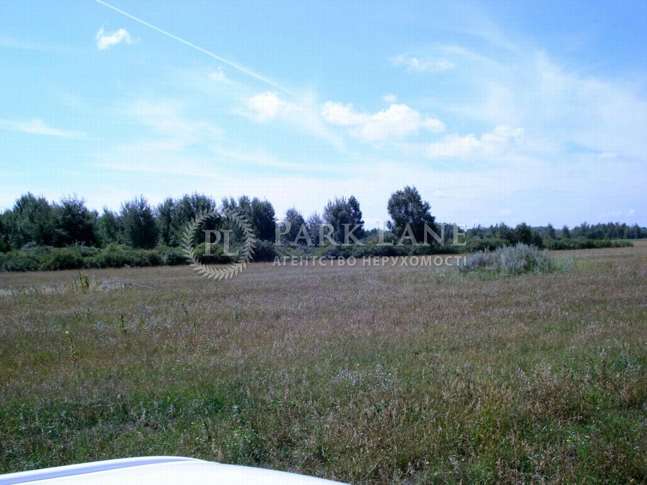 Земельна ділянка Літки, X-30801 - Фото 5