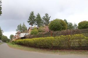 Дом L-23172, Рожевка - Фото 1