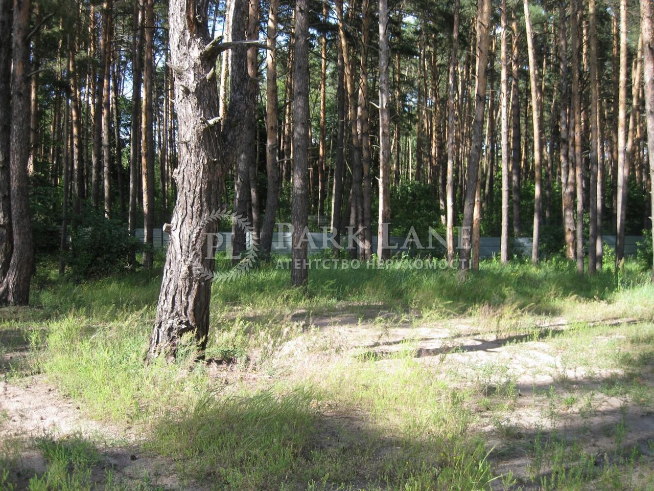 Земельный участок Украинка, I-24497 - Фото 1