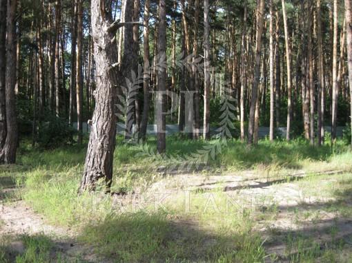Земельный участок Украинка, I-24497 - Фото