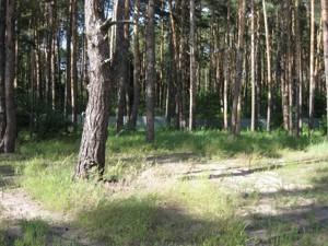 Земельный участок I-24497, Украинка - Фото 1