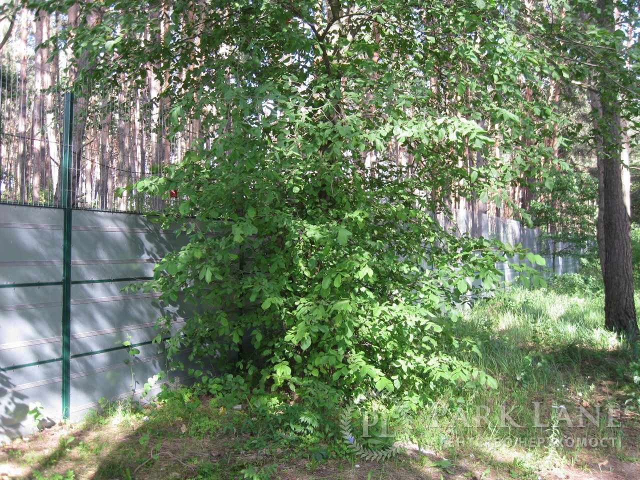 Земельный участок Украинка, I-24497 - Фото 2