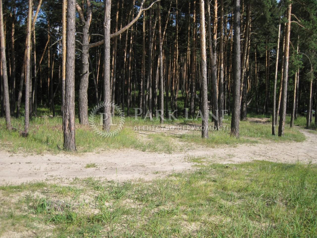 Земельна ділянка Українка, I-24497 - Фото 8