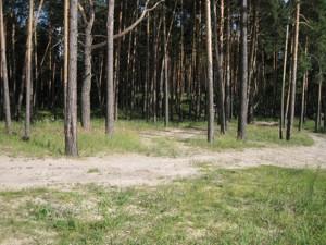 Земельный участок I-24497, Украинка - Фото 8