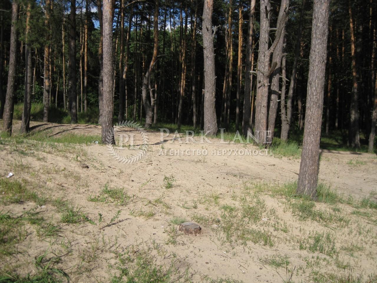 Земельный участок Украинка, I-24497 - Фото 9
