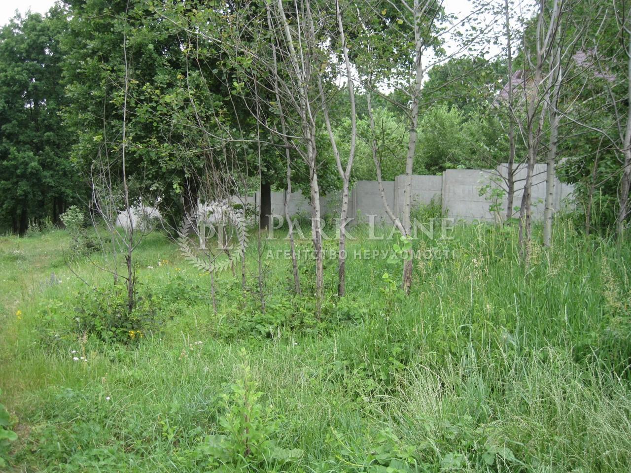 Земельный участок ул. Декабристов, Васильков, I-24542 - Фото 1