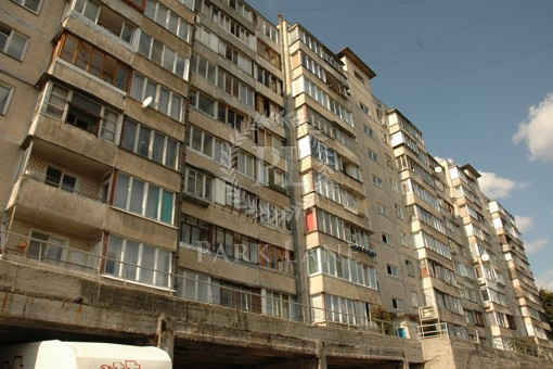 Apartment Pechenizka, 35/43, Kyiv, K-28586 - Photo