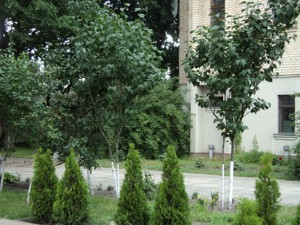Дом X-34366, Старокиевская, Козин (Конча-Заспа) - Фото 13